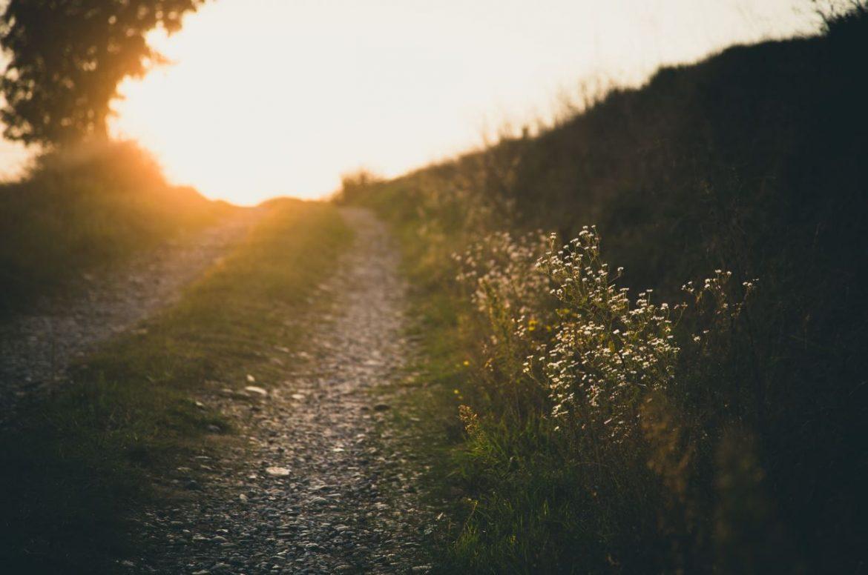 Reise auf dem Jakobsweg von Hape Kerkeling