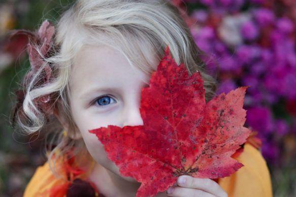 Glück Tipps Herbst
