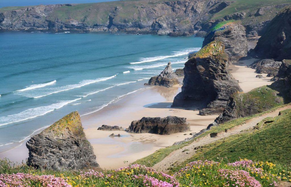 Meer, Strand, Felsen, Blumen, Südengland